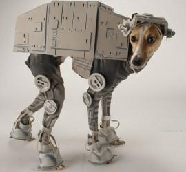 Dog AT-AT